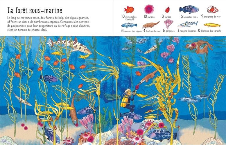 1001 choses trouver mer pages