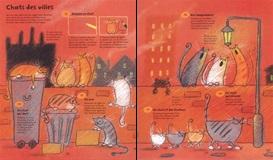 365 choses dessiner peindre chats
